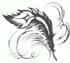 Вова из Перми